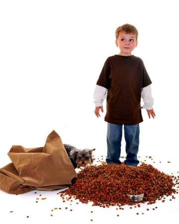 dog food: Expressive preschool boy who realises he Stock Photo