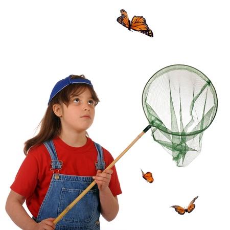 An older elementary girl stalking a large monarch butterfly  photo