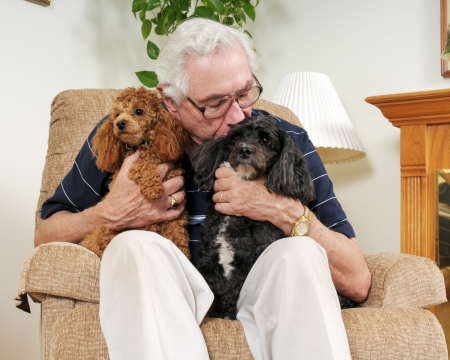 An elderly man holding his two poodles, while kissing one of them  Imagens