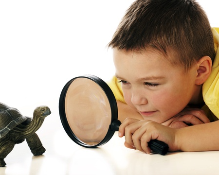 A kindergarten boy studying a turtle through a magnifying glass    Фото со стока