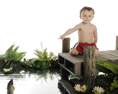 An adorable 2-year-old swimmer kneeling on a rustic dock pointing to a fish jumping out of the water below.  On a white background. photo