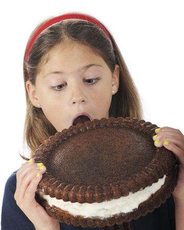 Closeup of an attractive elementary girl, mouth opened wide, preparing to bite into a giant, cream-filled cookie   On a white background  photo