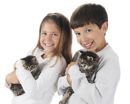 A brother and sister each happily holding a kitten.  On a white background. Stock Photo - 14089812