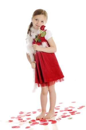 A happy elementary girl in red, standing among rose petals while holding a red rose bud.  On a white background. Stock Photo - 14295545