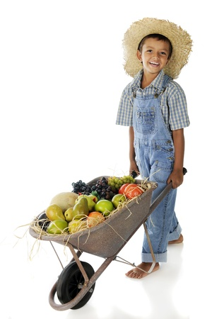 An adorable young farmer pushing a wheelbarrow full of assorted fruit   On a white background