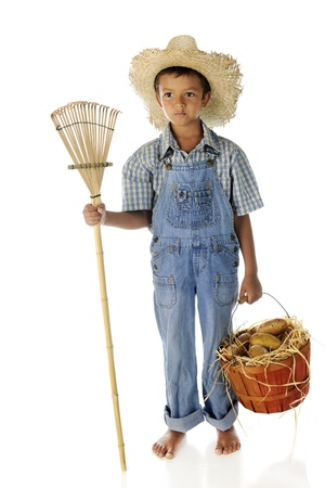 Full-length portrait of a young farm boy carrying a basket of potatoes and holding a rake   On a white background  Stock Photo - 14898780