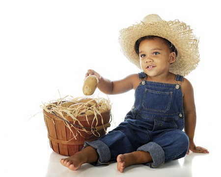 An adorable 2-year-old farmer sitting by a basket of his potatoes.  On a white background.