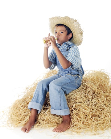 An adorable little farm boy sitting on a haystack, barefoot in blue blowing a tiny gold trumpet.  On a white background. Фото со стока