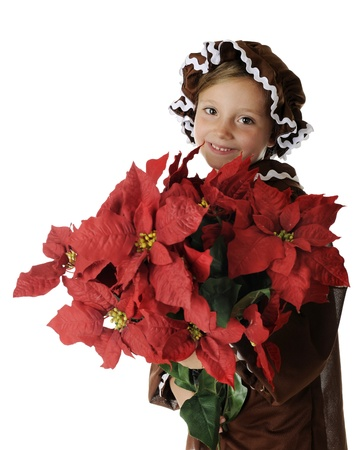 A beautiful young elementary gingerbread girl carrying a huge bouquet of red poinsettias.  On a white background. photo