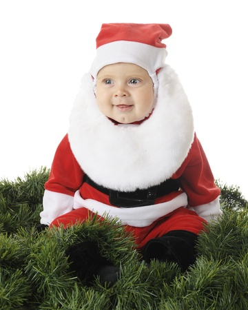 An adorable baby Santa happily sitting surrounded by green garland.  On a white background. photo