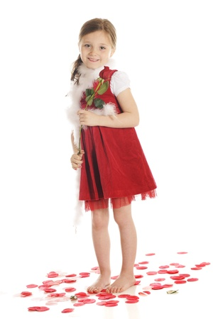 A beautiful elementary girl holding a long-stemmed rosebud while standing barefoot among rose petals   She dressed in red with a fluffy, white boa   On a white background Stock Photo - 17036208