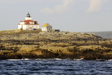 A boarded lighthouse on a barren rock populated with sea birds. Stock Photo - 17147614