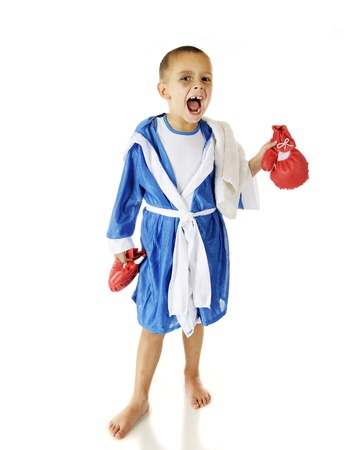A vicious-looking preschooler holding his boxing gloves as he looks at the viewer in his robe.  On a white background. photo