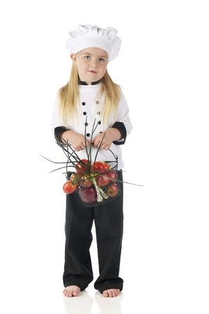 basketful: A barefoot preschool chef carrying a wire basketful of fresh veggies.  On a white background.