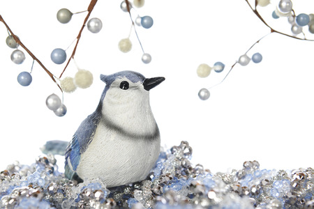 A blue jay sitting on sparkly Christmas jewels looking up at branches of berries.  On a white background. photo
