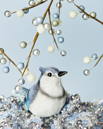 silvery: A blue jay bird sitting on frosty jewels among branches of blue, white and silvery berries.  On a blue background. Stock Photo