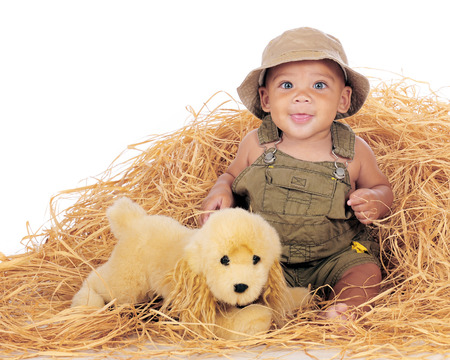 A happy, biracial baby boy in overalls playing in a pile of hay with his toy pup   Isolated on white  Stock Photo - 26560626