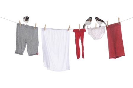 panty hose: Three birds standing on a clothesline with an assortment of drying clothes.