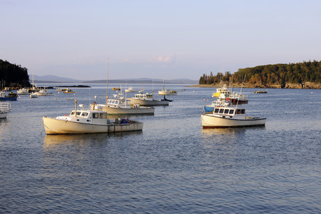 lobster boat: Unmanned lobster boats moored in an ocean bay.