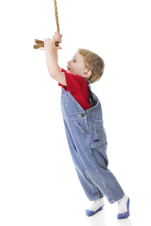 Profile of an adorable toddler wearing train engineers pinstriped overalls happily stretching high to pull the rope that rings the engines bell.  On a white background. photo