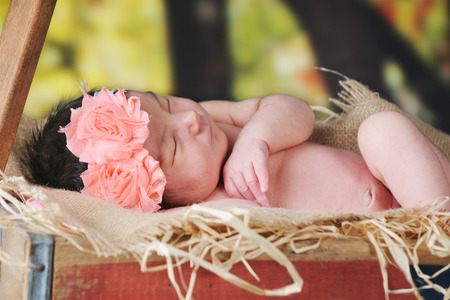 confortable: A beautiful newborn birl sleeping outside in a rustic hay-filled wagon.