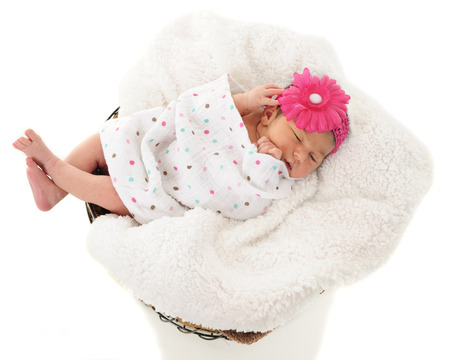 Overhead view of a newborn girl sleeping in a blanket-lined wire basket.  On a white background. photo