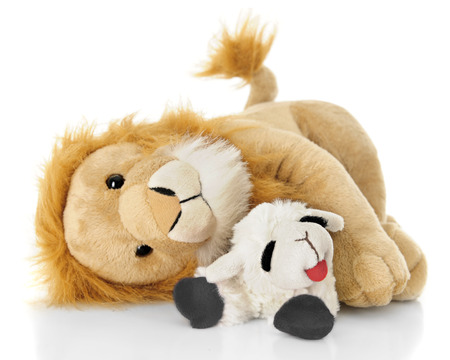 lion and lamb: A toy lamb and lion peacefully laying down together.  On a white background.