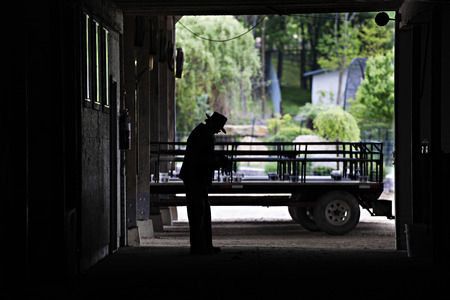 An image of a standing Amish man and his hay wagon taken from inside his barn.  His silouette stands in contrast to the bright greens of the spring outdoors seen through the opoened barn door, glasses Imagens