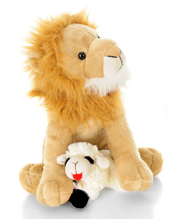 lion and lamb: A toy lamb contentedly laying down in between the front paws of a toy lion.  On a white background.