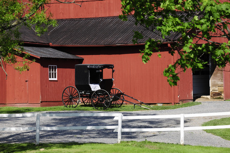 amish buggy: An Amish buggy parked by a red barn in summertime.