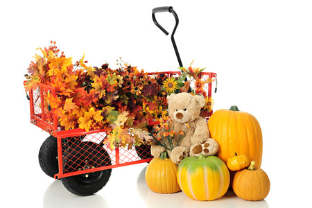 A work wagon full of colorful fall foliage.  A pile of pumkins and a toy bear holding a bouquet of tiny fall flowers sits neraby.  On a white background.