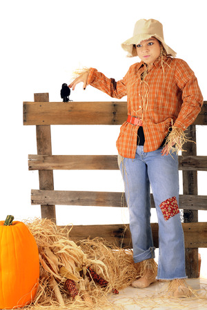 goofy: An attractive teen scarecrow with a goofy expression.  Shes standing by an rustic rail fence with a hay stack, pumpkin and Indian corn nearby.  On a white background.