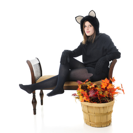 panty hose: A beautiful teen black cat sitting on a bench with a basket of fall leaves nearby.  On a white background. Stock Photo