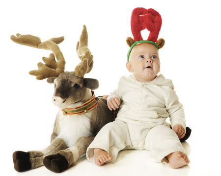 An adorable baby boy wearing reigndeer antlers looking up in wonder as he sits by a toy reigneer.  On a white background. photo