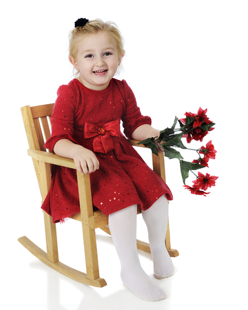 sized: An adorable preschooler dessed up for Christmas.  Shes happily sitting in a child-sized rocker holding a bouquet of poinsettias.  On a white background. Stock Photo
