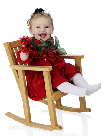 baby sit: An adorable baby girl happily sitting in a rocking chair and holding poinsettias while all dressed up for Christmas.  On a white background.