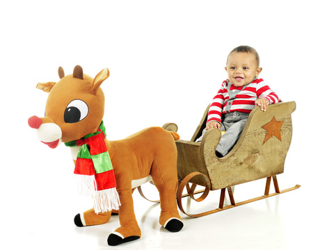 rudolph: An adorable baby boy waiting for a toy Rudolph to pull the sleigh in which he happily sits.   On a white background.