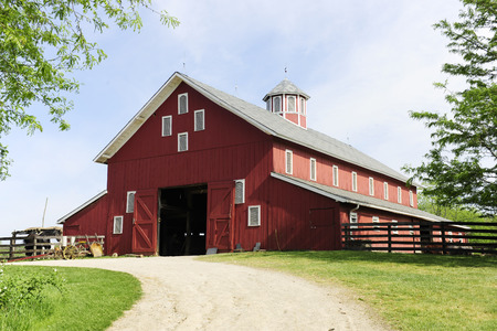 old barn: A springtime image taken on the trail leading to the open doors of a big red barn on a sunny day.