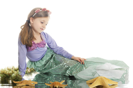 watery: A beautiful little mermaid relaxed among starfish and seaweed, with a watery reflection.  On a white background. Stock Photo
