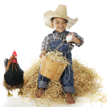 basketful: A happy young farm boy sounting eggs from his basket while sitting on a hay stack.  A rooster stands nearby.  On a white background.