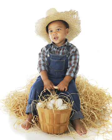 basketful: A tired preschool farmer relaxing on a hay stack while holding onto his basketful of eggs.  On a white background.