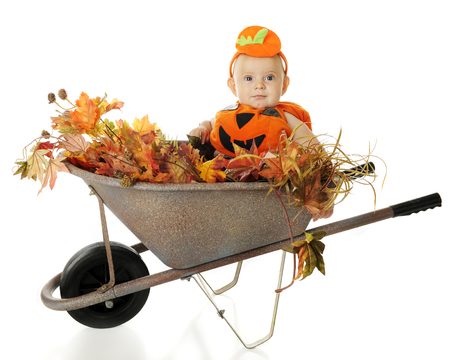 An adorable baby boy in his pumkin costume, sitting in a small, rustic wheelbarrow filled with fall foliage.  On a white background. photo