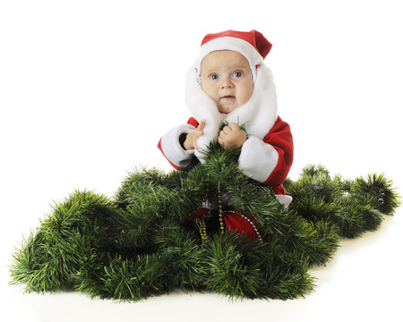 An adorable baby Santa sitting in a pile of green garland.  On a white background. photo