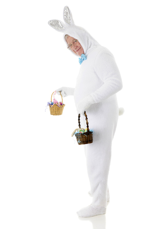 A senior male Easter bunny looking back at the viewer as he's off to deliver two small baskets of goodies.  On a white background. photo