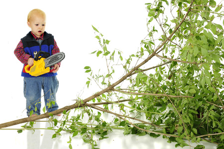 An adorable toddler looking distressed as he hold s toy chain saw behind a fallen tree.  On a white background.
