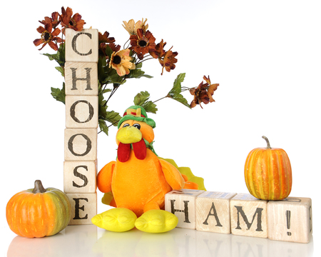 A cute plush turkey among small pumpkins, fall flowers and alphabet blocks spelling