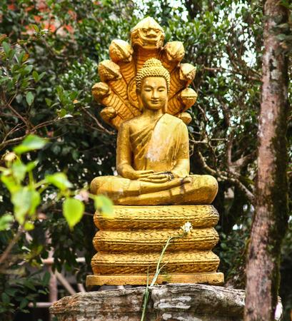A golden Buddha statue in a temple garden in Cambodia
