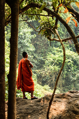 A Buddhist monk in an orange robe stands in Jungel enjoying the sight of nature