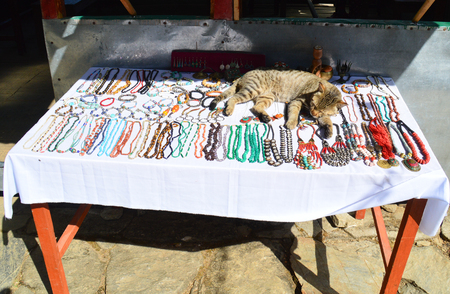 A domestic cat basks where it suits her. She does not care if she steals the show of the beautiful jewelry. Imagens