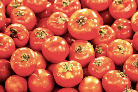 Fresh crunchy tomato sorted by quality are sold on the weekend market by haggling Stok Fotoğraf